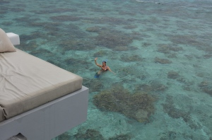 World class snorkeling with incredible coral reefs all t yourself.